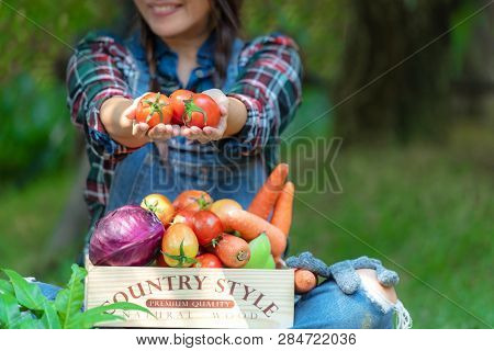 Asian Happy Women Farmer Holding A Basket Of Vegetables Organic In The Vineyard Outdoors Countryside