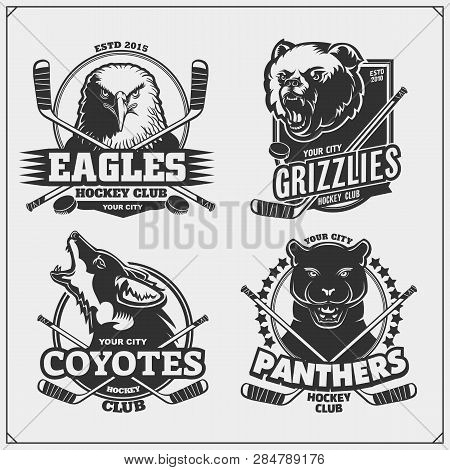 Set Of Hockey Badges, Labels And Design Elements. Sport Club Emblems With Grizzly Bear, Panther, Coy