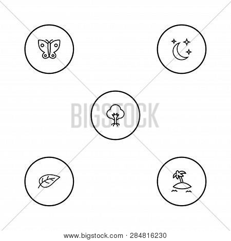Set Of 5 Bio Icons Line Style Set. Collection Of Midnight, Isle Beach, Foliage And Other Elements.