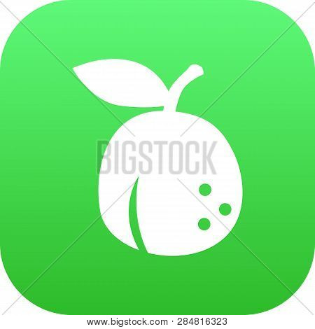 Isolated Apricot Icon Symbol On Clean Background. Vector Plum Element In Trendy Style.
