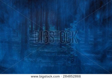 Blue Ghostly Mist In The Night Forest Nobody Around Only Bewitching Wilderness