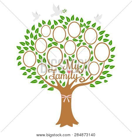 Family Tree Generation, Genealogical Tree With Photo Place Family, Community On Branch, Vector Illus