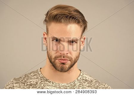 Man Bearded Confident Face, Grey Background. Skin Care Concept. Man Bearded Unshaven Guy Looks Hands