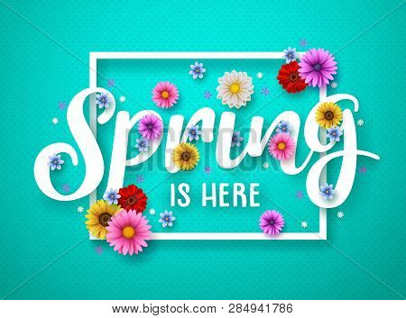 Spring Vector Banner Design. Spring Text With Colorful Chrysanthemum And Daisy Flowers In White Fram