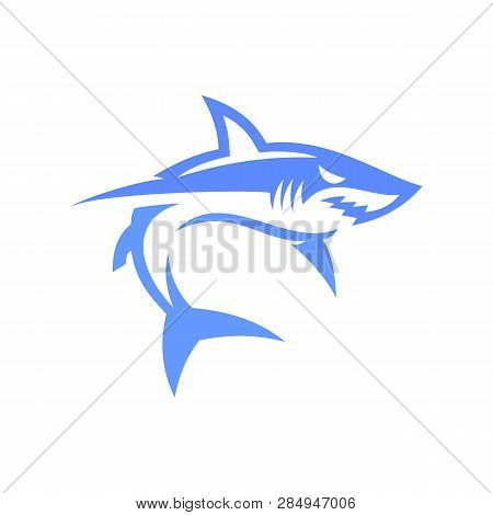 Shark Illustration. Shark Illustration Vector. Shark Illustration Art. Shark Illustration Eps. Shark
