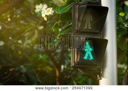 Pedestrian Signals On Traffic Light Pole. Pedestrian Crossing Sign For Safe To Walk In The City. Cro