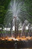 "Fountain ""The Sun"" In Petrodvorets (Peterhof) St Petersburg Russia. poster"