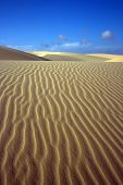 Sandy dunes in desert and cloudy sky poster