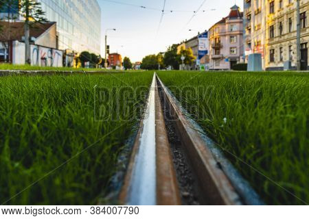 Green Tramway Track. Grass Covered Tramway Track. Greenery In The City. Habitable Zone Reduce Urban