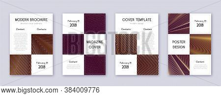 Business Brochure Design Template Set. Gold Abstract Lines On Bordo Background. Admirable Brochure D