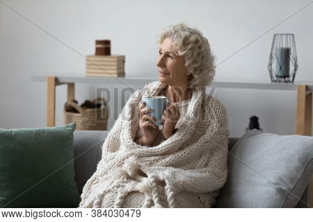 Dreamy Satisfied Mature Woman Wrapped Warm Blanket Relaxing On Couch