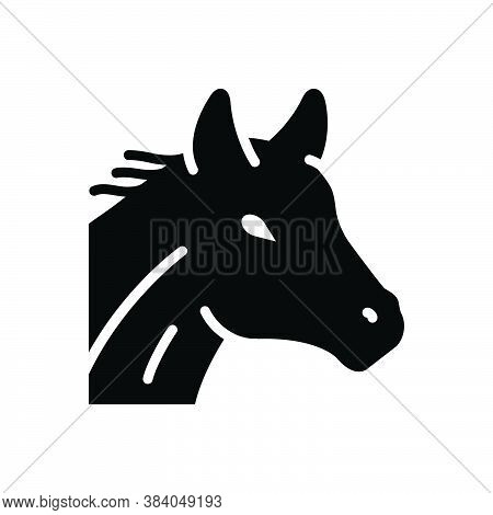 Black Solid Icon For Horse Running Domestic Mustang Equestrian Races Ride Rider Competition Gambling