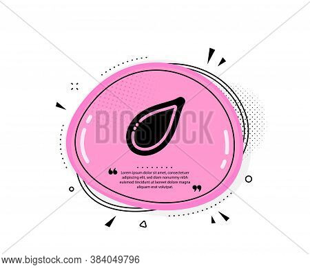 Pumpkin Seed Icon. Quote Speech Bubble. Tasty Seeds Sign. Vegan Food Symbol. Quotation Marks. Classi