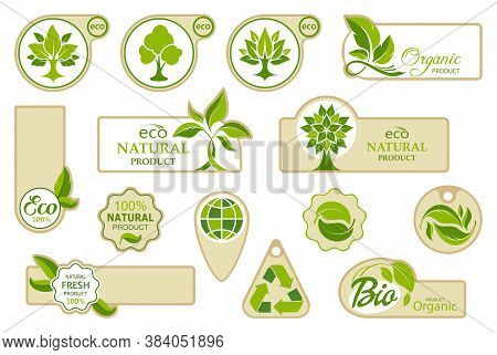 Ecology Icons.  Collection Of Symbols With Leaves And Trees. Bio, Organic And Natural Symbols. Set O