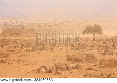 Barren plains with dust storm during a severe drought, Kenya
