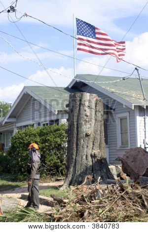 Shortened Tree