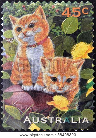 AUSTRALIA - CIRCA 1996: A stamp printed in Australia shows image of two cats circa 1996