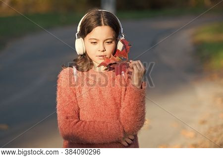 Music For Autumn Cozy Mood. Listening Songs. Melody For Good Mood. Drive By Song. Enjoy Music Outdoo