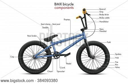 Labeled Bmx Bicycle Components. Vector Technical Illustration Shows A Diagram Of The Bike Parts And
