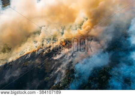 Wildfire Aerial View. Fire And Smoke. Burning Forest. Natural Disaster From Climate Change. Dry Gras