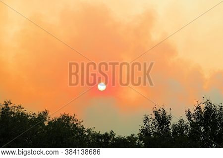 Smoke From A Nearby Wildfire Surrounded Forests Taken In The Drought Stricken California Landscape