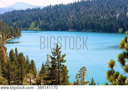 Lush Alpine Coniferous Forest Overlooking Echo Lake, Ca In The Rural Sierra Nevada Mountains