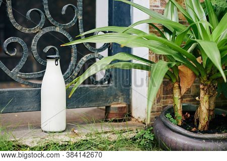 Glass Bottle Full Of Fresh Milk Delivered To Someone Standing On Ground Against Wicket, Horizontal C