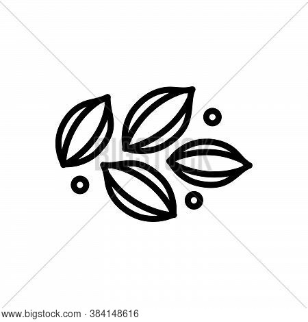 Black Line Icon For Celery Lettuce Pascal-celery Paschal Seed Condiment Spice Flavor Ingredient