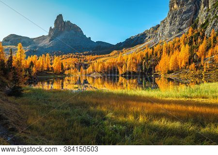 Majestic Autumn Scenery With Colorful Redwood Forest And Famous Lake Federa In The Dolomites, Italy,