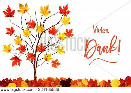 Tree With Colorful Leaf Decoration, Calligraphy Vielen Dank Means Thank You