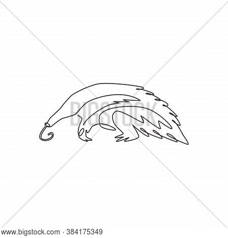 Single Continuous Line Drawing Of Large Anteater For Logo Identity. Insectivorous Animal Mascot Conc