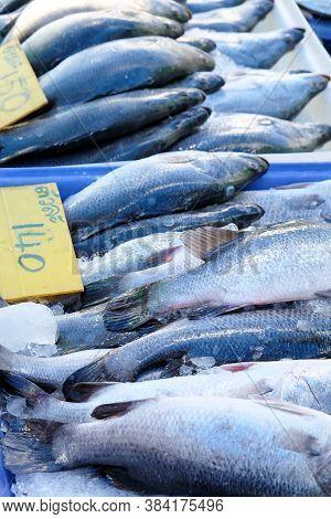 Seafood, Fresh Barramundi Fish In Local Market,thailand