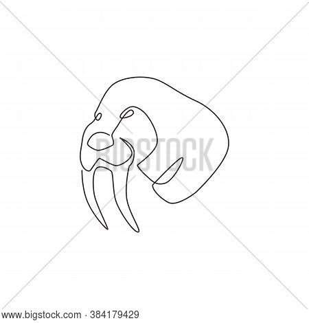 One Single Line Drawing Of Big Walrus Head For Company Logo Identity. Flippered Marine Mammal Mascot