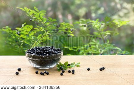 Bowl With Ripe Berries Wild Bilberries On Wooden Table On Background Of Shrubs With Ripe Fruit Wild