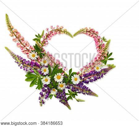 Wild Flowers Pink And Violet Lupin (lupinus Albus) And Daisies In The Shape Heart On A White Backgro