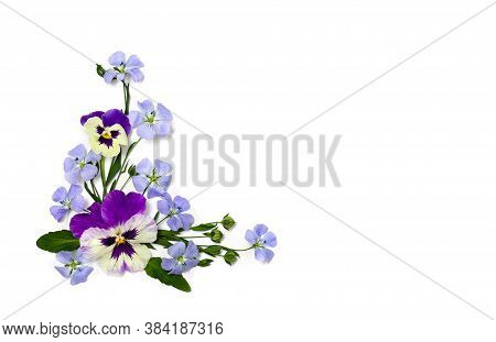 Violet Flowers Viola Tricolor, Blue Flowers Flax And Capsule With Seed Flax ( Linseed ) On A White B