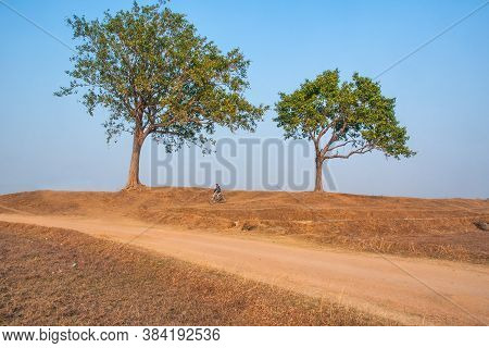 January 15th 2016 Manbhum West Bengal India: Rural Landscape And Cyclist At Manbhum West Bengal Indi