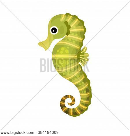 Green Seahorse With Curled Tail As Marine Animal Vector Illustration