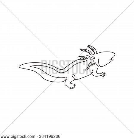 One Single Line Drawing Of Adorable Axolotl For Company Logo Identity. Neotenic Salamander Mascot Co