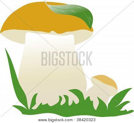 Vector mushroom