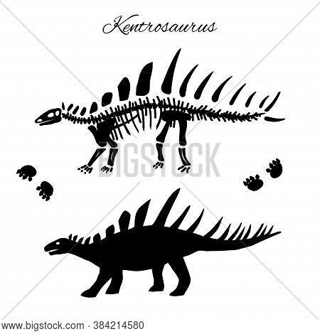 Kentrosaurus Silhouette, Footprints And Skeleton Dinosaur Vector Illustration Isolated On White.