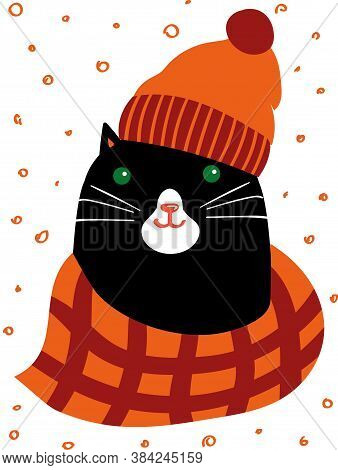 Black Cat Dressed In Warm Knitted Hat And Scarf. Cute And Cosy Autumn Vector Illustration. Feline Ch
