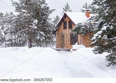 Rustic Log House, Snow-covered Pine Trees, Big Snow Drifts, Snowing.rural Beautiful Winter Landscape