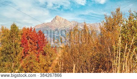 Mount Krivan Peak Slovak Symbol With Out Of Focus Autumn Coloured Trees In Foreground, Typical Autum