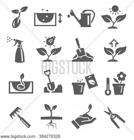 Gardening, Plants Growing Bold Black Silhouette Icons Set Isolated On White. Pomiculture, Orcharding
