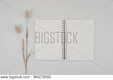 Blank Spiral Bound Sketchbook Or Journal Or Diary With Rabbit Tail Dry Flower. Mock-up Of Stationary