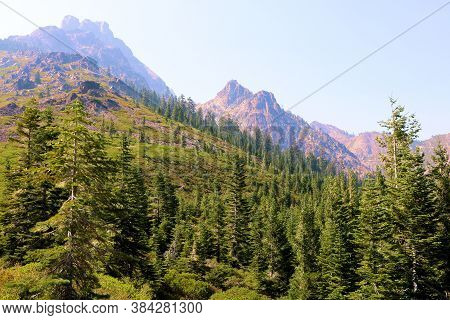 Pine Forests And Alpine Meadows With Mountain Crags Taken At The Sierra Buttes In The Northern Sierr