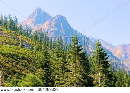 Lush Alpine Forests On Mountain Slopes With Volcanic Peaks Beyond Taken At The Sierra Buttes In The