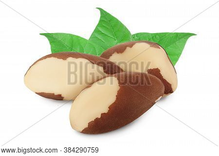 Brasil Nuts Isolated On White Background With Clipping Path And Full Depth Of Field