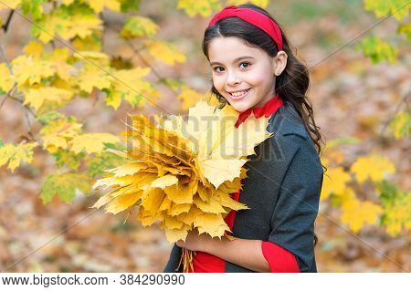 Carefree And Happy. Happy Kid Enjoy Weather. Small Girl In Autumn Leaves. Fall Time. Child With Long